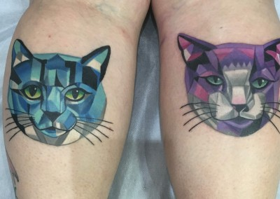 Geometrical Cats